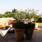 Best view overlooking the Atlas Mountains from this stylish laidbackhellip